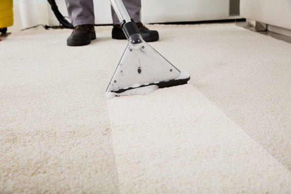 Carpet and Floor Care